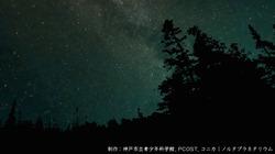 star_1.jpg
